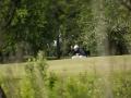 tn_DSCF2331_golfifoto_kadri palta