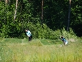 DSCF6979_veeb_golfifoto_kadri-palta