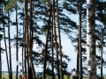 DSCF7886_veeb_golfifoto_kadri-palta