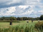 DSCF0364_veeb_golfifoto_kadri-palta