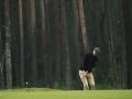 DSCF8056_golfifoto_veeb_kadri-palta