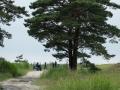 DSCF9032_golfifoto_veeb_kadri-palta